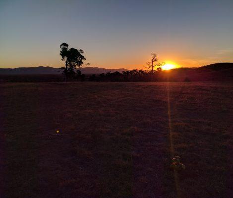 Alkoomi Farm Sunset
